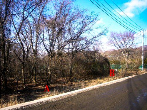 山中湖村/畑/土地557.50 ㎡〜(168坪~ )/3区画