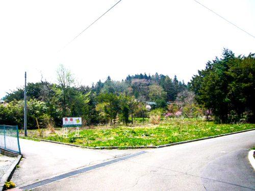 鳴沢村/宅地/土地577.52㎡(174.69坪)