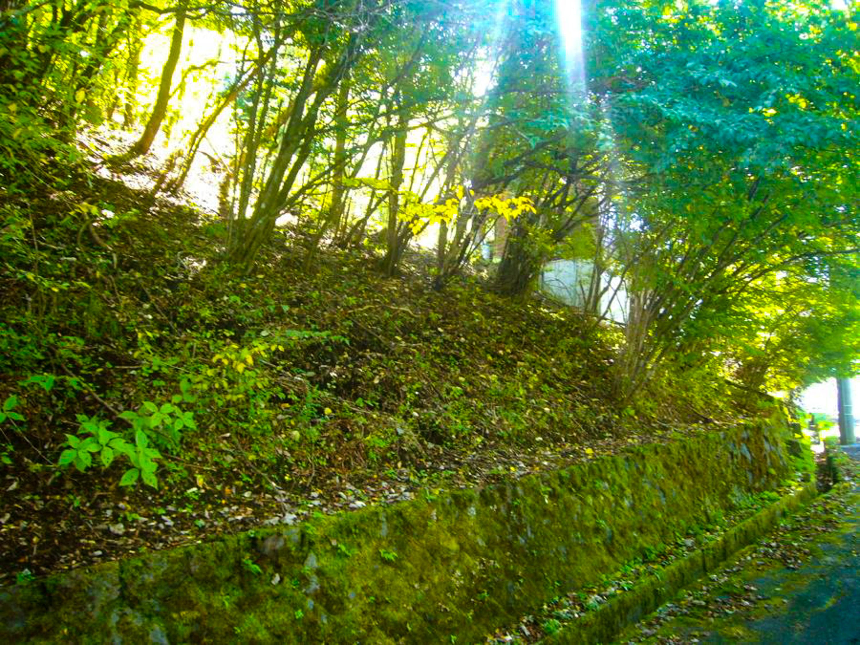 山中湖村/原野/土地279㎡(84.39坪) – 富士五湖周辺の不動産情報 ...